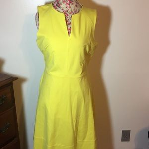 The Limited brand woman's Large dress NWT